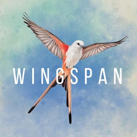 Wingspan Art