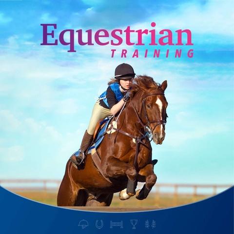 Equestrian Training Art