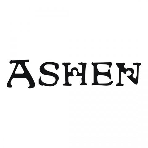Ashen 2015 Art