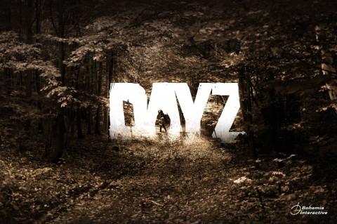 DayZ Art